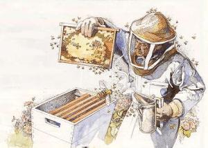 Houston-Stewart County Bee Keepers.com