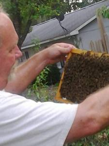 Beekeeping - No Gear