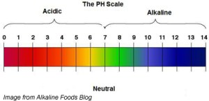 ph-scale1