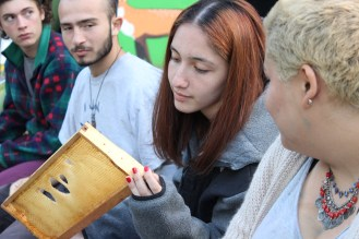 Checking out the bee frames and drawn out foundation. — at Eugene Young Environmental Education Center.