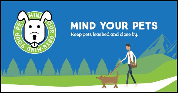 Mind your pets.