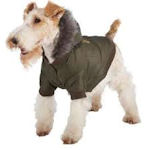 save on dog coats and sweaters
