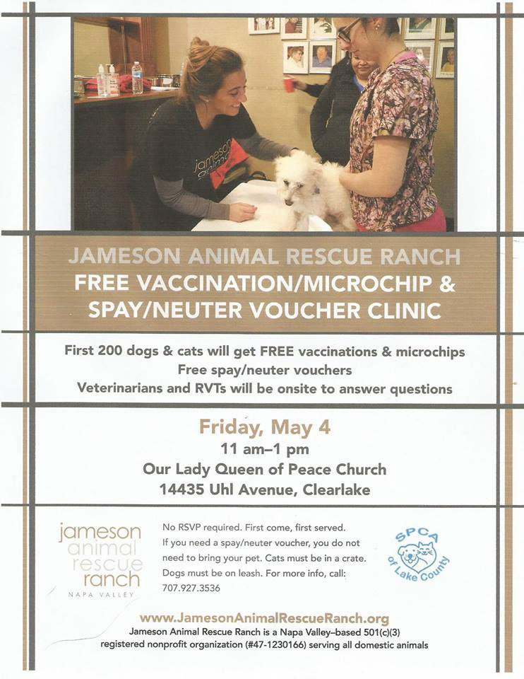 Jameson Animal Rescue Free vaccination, microchip and spay/neuter