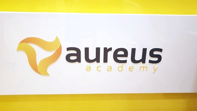 Embarking on our Music learning journey with Aureus Academy