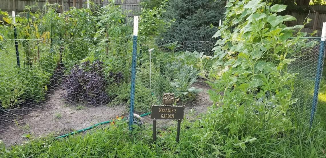 Late summer garden gate