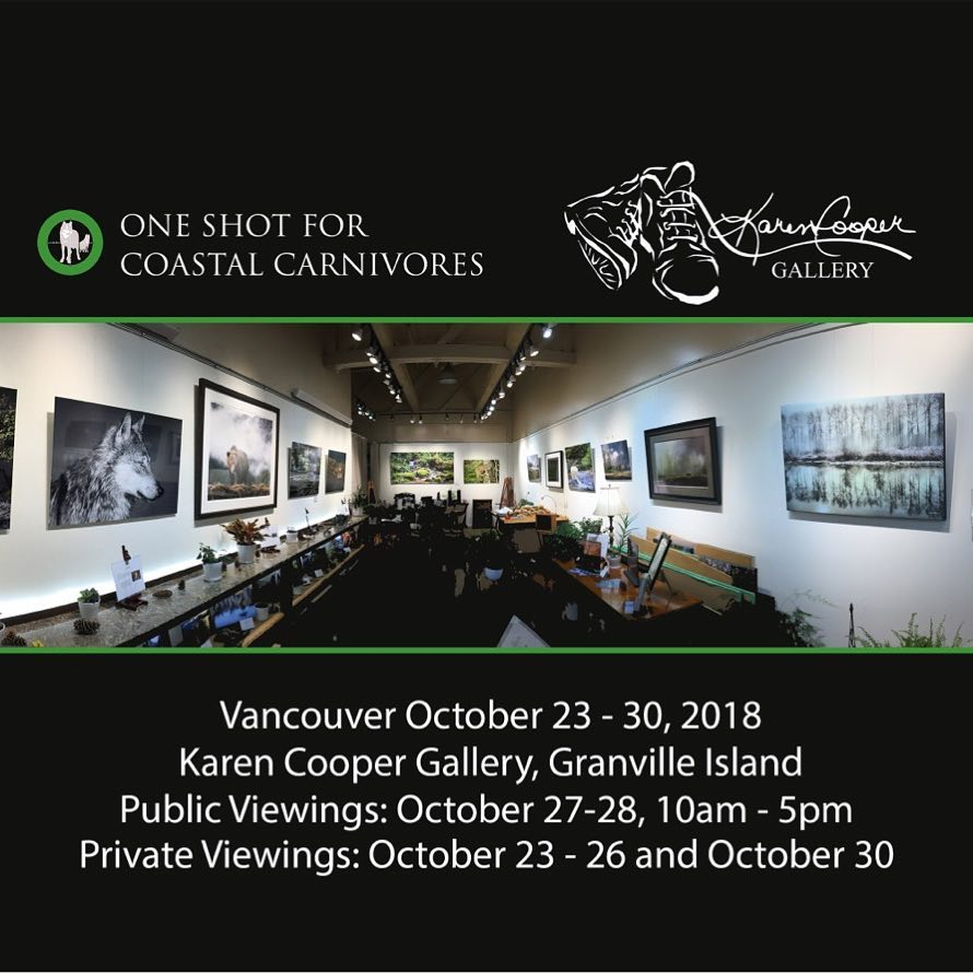 Image of Karen Cooper Gallery on Granville island with details about public viewing of One Shot for Coastal Carnivores wildlife photography exhibit dates