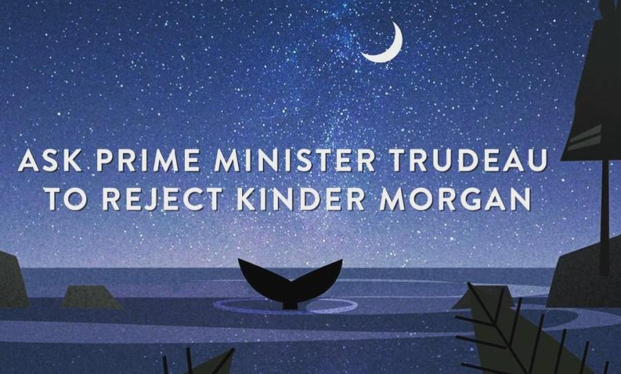 Poster of orca whale tail in the blue ocean under a moonlit blue sky, with the text Prime Minister Trudeau: Stop Kinder Morgan