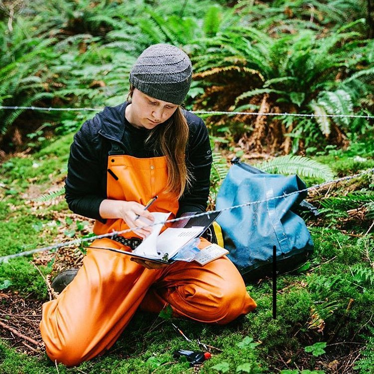 A woman sitting on a forest floor surrounded by ferns. She is wearing a grey tuque and an orange waterproof bodysuit, and she is writing in a notebook.