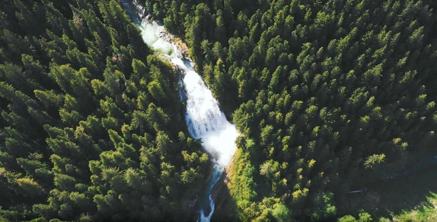 A rich green forest with a roaring river running across the middle, as seen from the air, in the Kitlope.