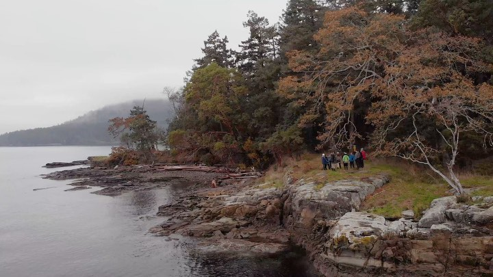 A long view shot of young people standing on a rock by the water and besides the forest.