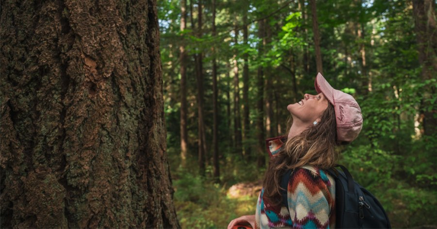 Shauna Doll looks up while she big tree hunting on Salts Spring.