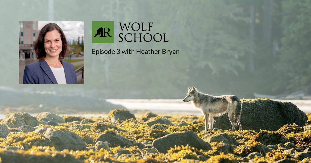Inset of Dr Heather Bryan smiling at the camera in a dark blue suit and white blouse, set against the main photograph of a pale brown wolf standing amidst rocks and yellow moss on an island shore beside a peaceful cove off the ocean.