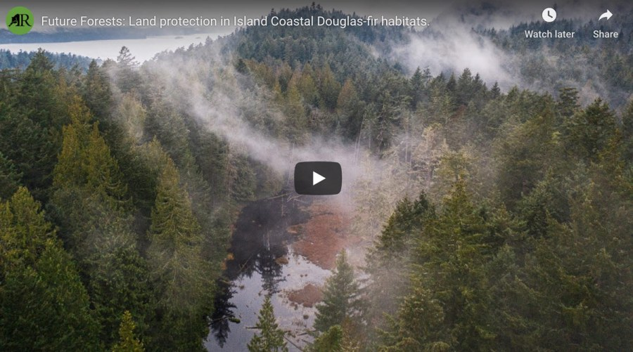 Aerial photo of a forest and toutube video cover image for the webinar recording of the forest protection webinar.