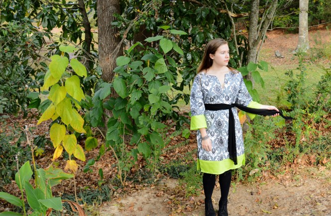 Sewing Project: Tunic Dress with Green Accents | Raine In The City