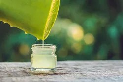 Aloe vera best to prevent and reduce wrinkles