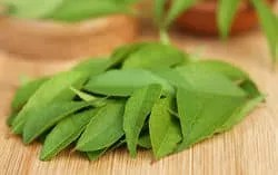Curry leaves best home remedy to cure baldness