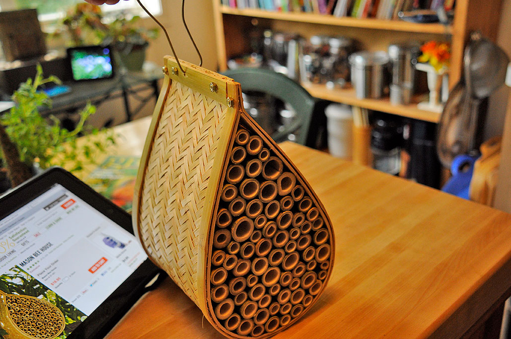 Amazing Mason Bee House Rainydaymagazine Download Free Architecture Designs Scobabritishbridgeorg