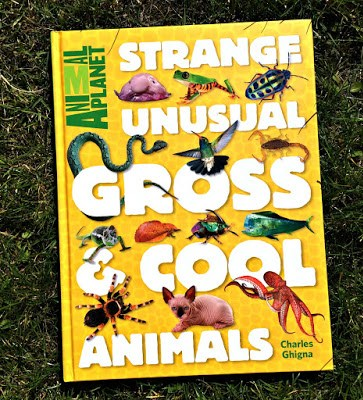 strange, unusual, gross and cool animals book