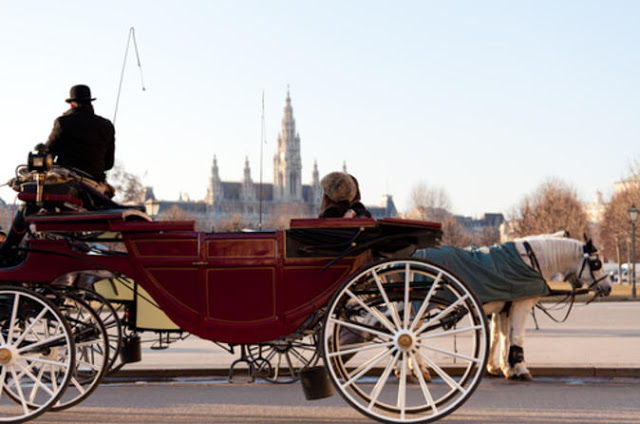 a horse drawn carriage riding through Vienna