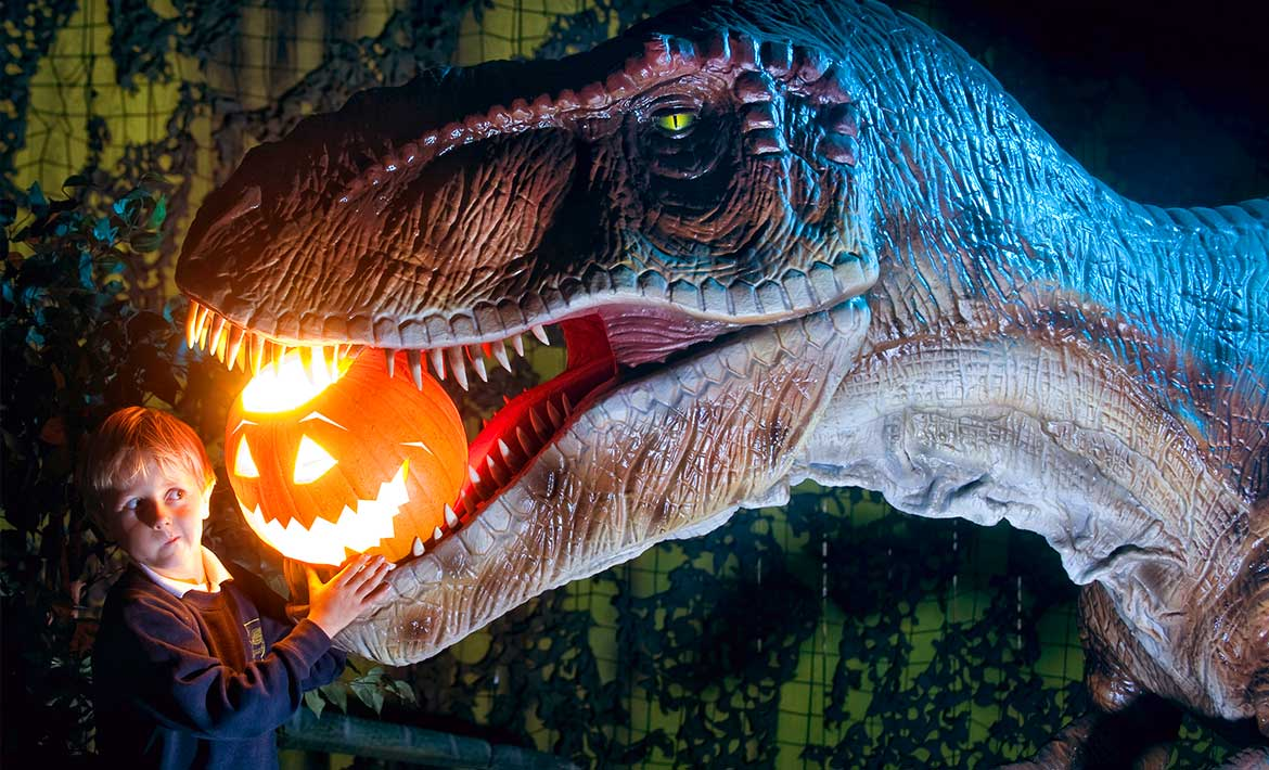 a little boy putting a scary pumpkin into a giant dinosaurs mouth.