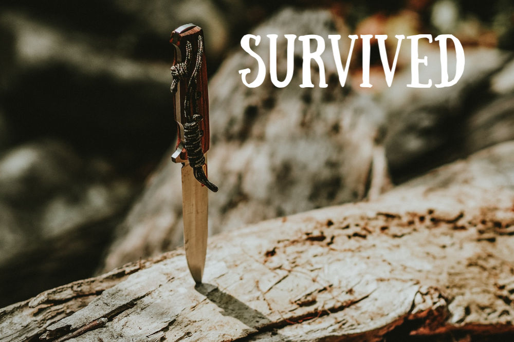 photo of a knife stuck in a rock and the word 'survived'