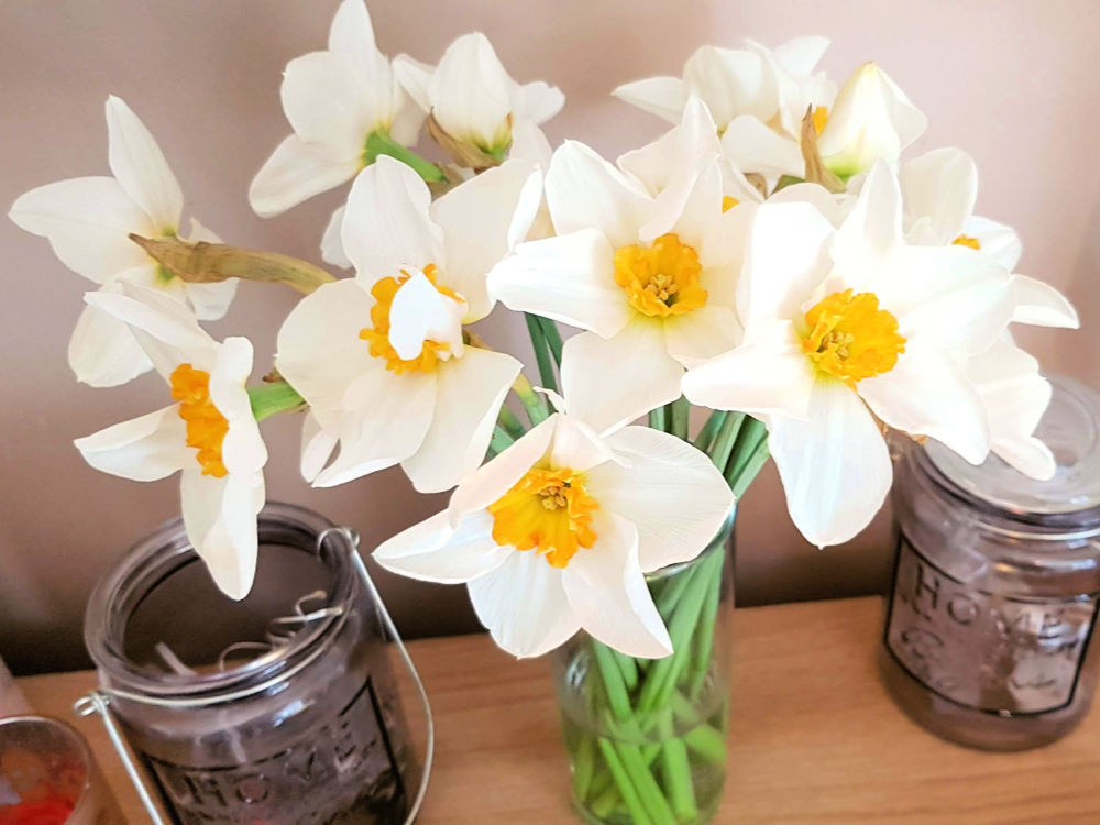 a bunch of daffodils in a vase