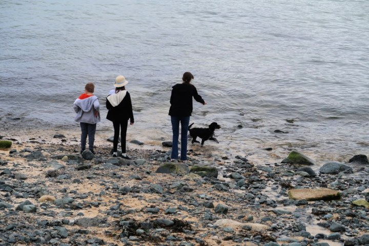 Three children standing on a beach with a black dog in the water.