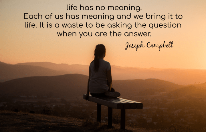Life has no meaning. Each of us has meaning and we bring it to life. It is a waste to be asking the question when you are the answer.