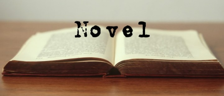 an open book with the word novel