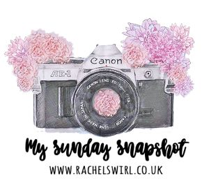 my sunday snapshot, image shows camera and pink flowers