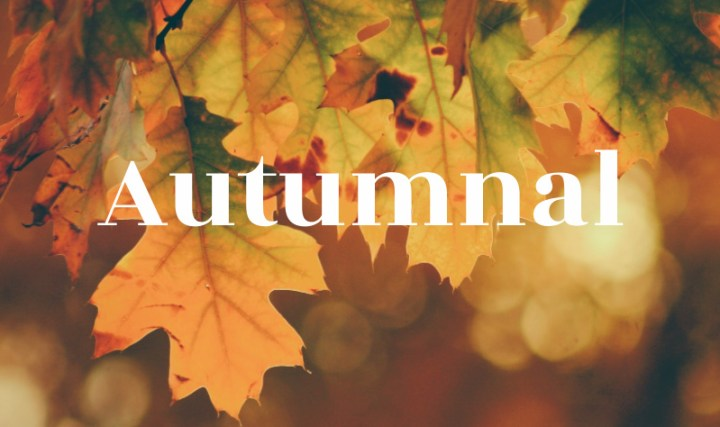 Autumnal, image shows a background of brown and yellow leaves and the word Autumnal.