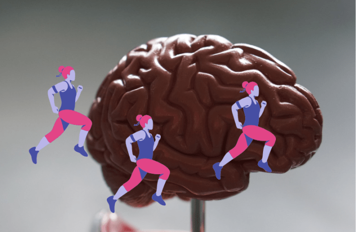 image shows a brain with images of running women over the top to represent the thoughts running around in my brain.