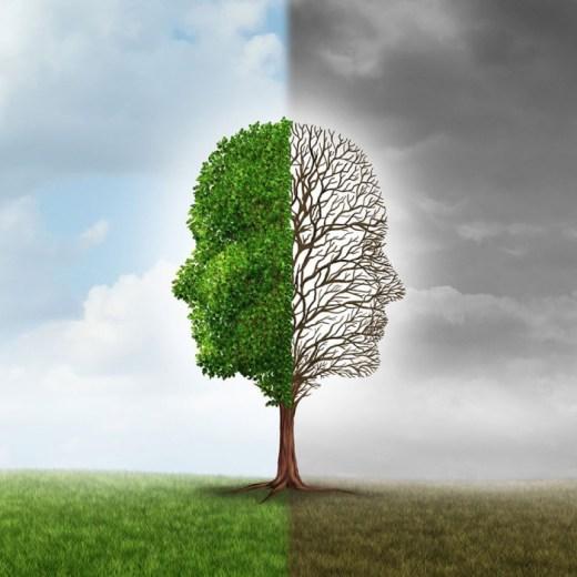 mental health mindfulness course