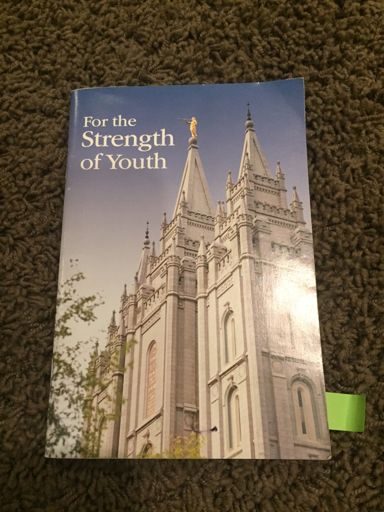 FTSOY For the Strength of Youth booklet