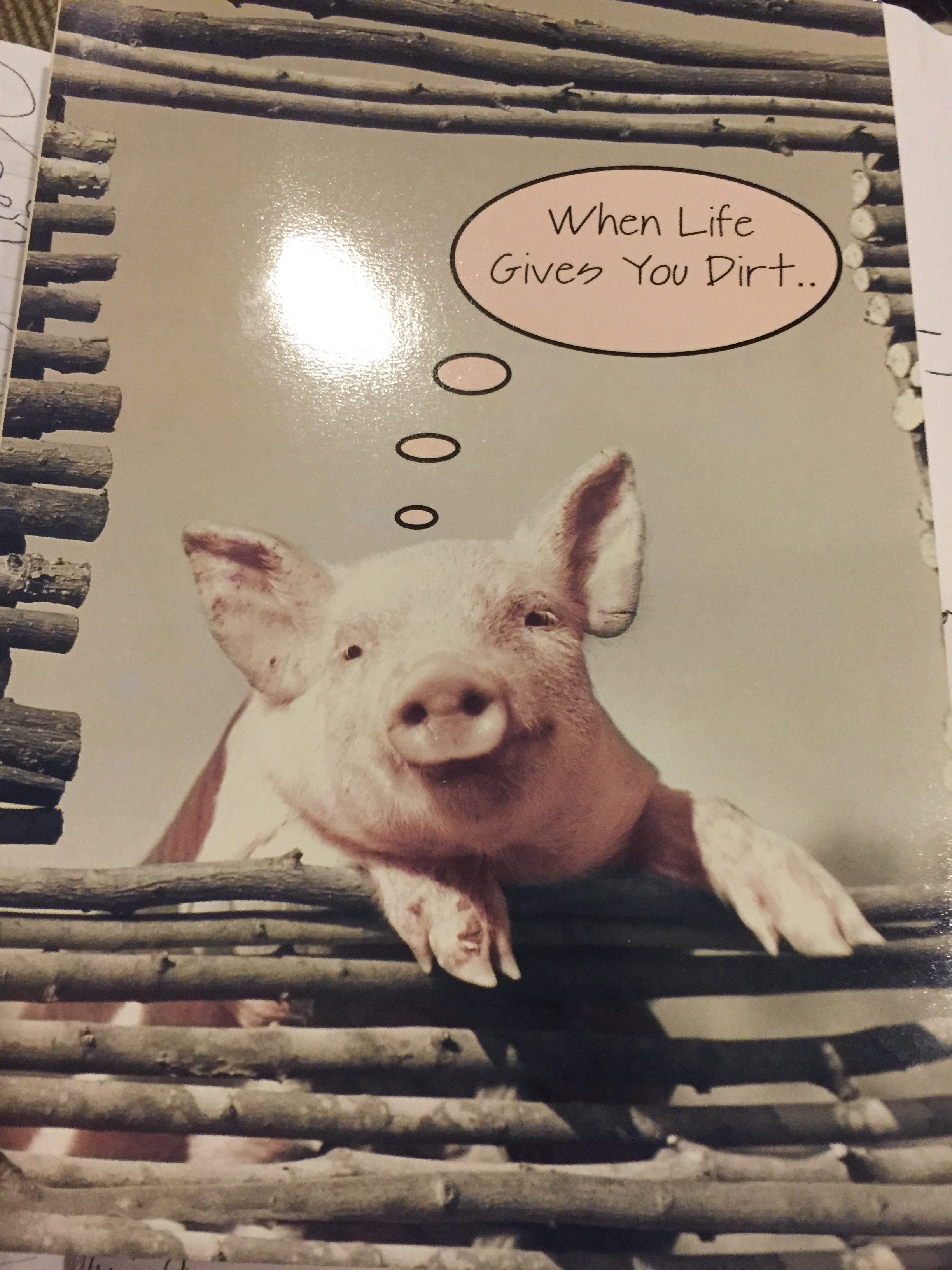 pig card life gives you dirt