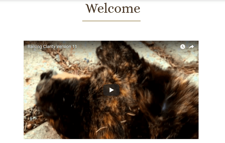 Screenshot of the Welcome Video section of our homepage.
