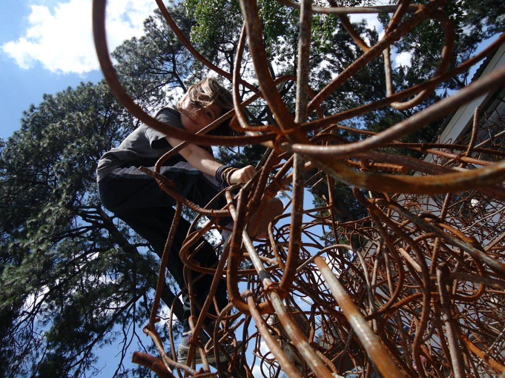 Climbing the art
