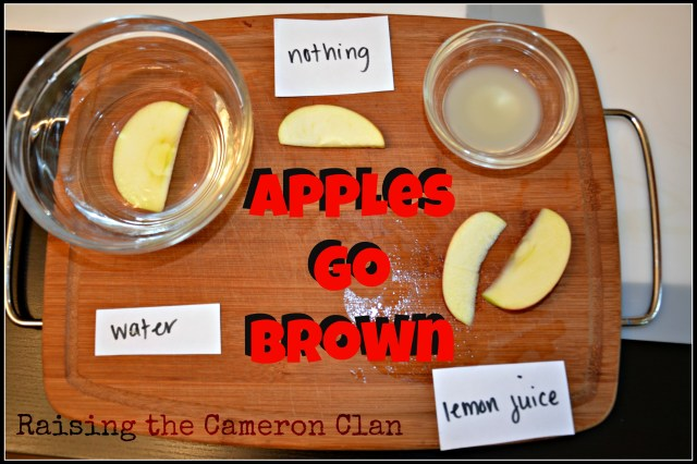 Apples Go Brown