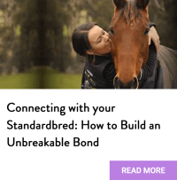 bond with standardbred