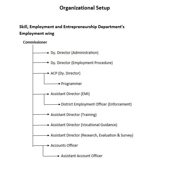 Employment Department Orgnaization Structure