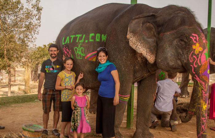 Elefantastic in Jaipur