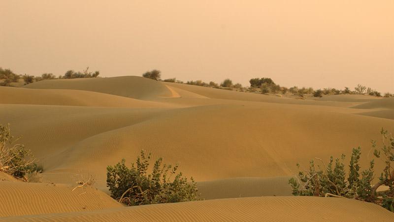 Activities to enjoy in desert topography of India