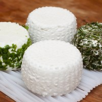 Goat Cheese Making: Homemade Chèvre