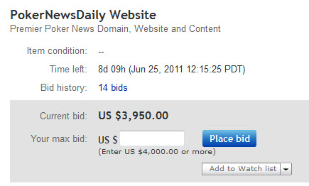 PokerNewsDaily eBay Auction Bid