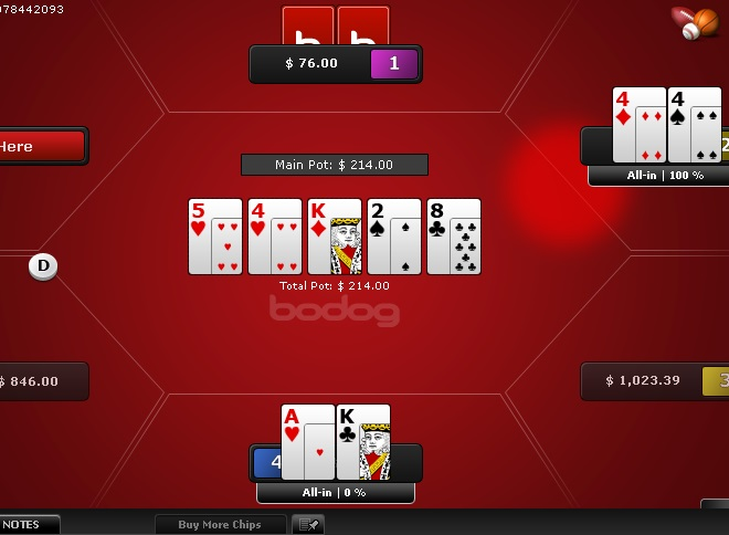 Bodog Review - Software