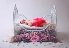 baby photography props rent