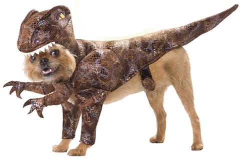 Raptor Dinosaur Dog Animal Planet Pet Halloween Costume