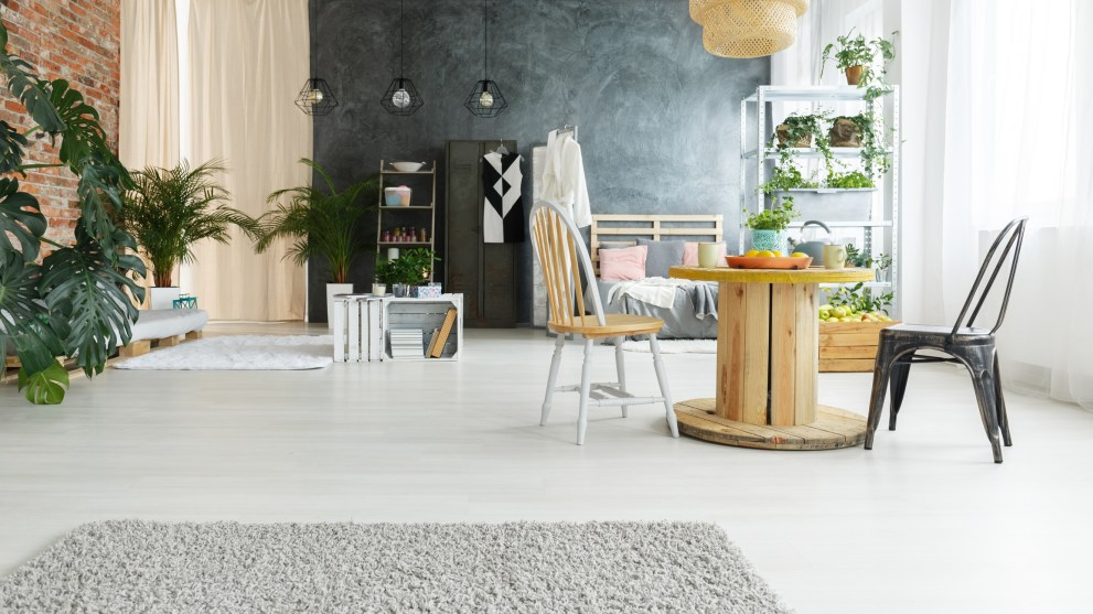 Which Area Rug Is Right for Your Space?