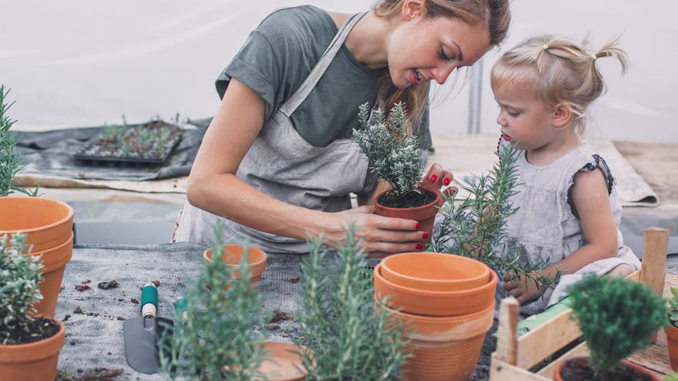 4 Reasons You Need Your Own Garden & How to Do It