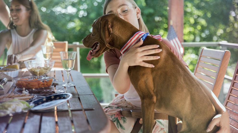 Five Tips to Protect Your Pet During Fireworks
